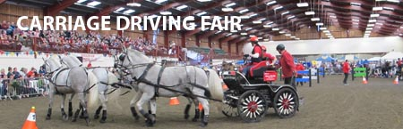 Carriage Show 2014 - SHOW Link